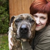 Pet Sitter 101 With August Animal Care